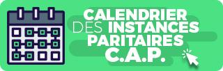 X_BOUTONS - boutons_calendrier_instances_paritaires_CAP.jpg